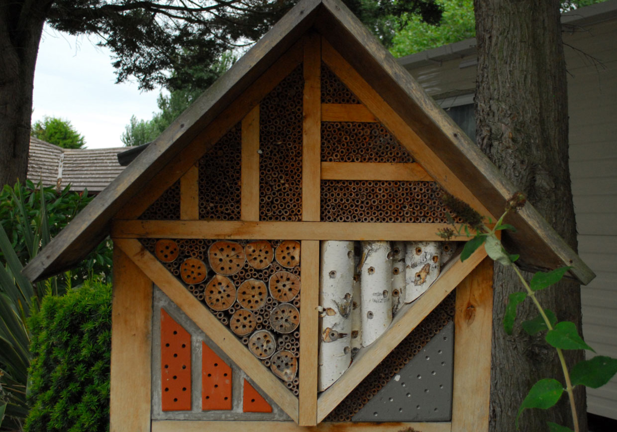 Talacre Insect Home